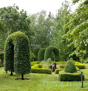 Froggsong Gardens_6006