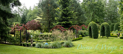 Froggsong Gardens_6004
