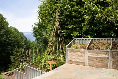 Millie's Garden_915