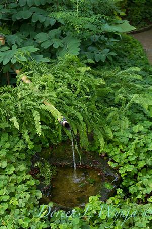 Millie's Garden_900