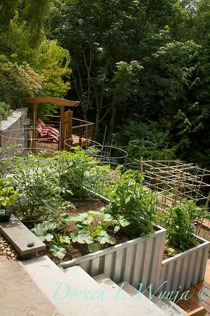 Millie's Garden_916