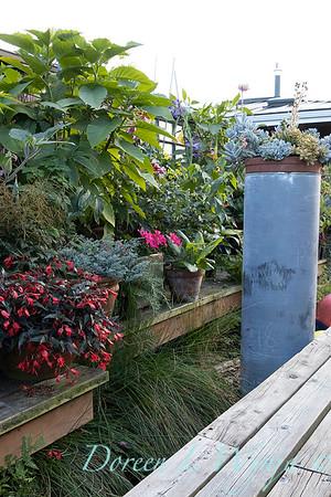 Bob Lily houseboat gardening_603