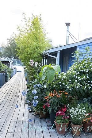 Houseboat garden_1131