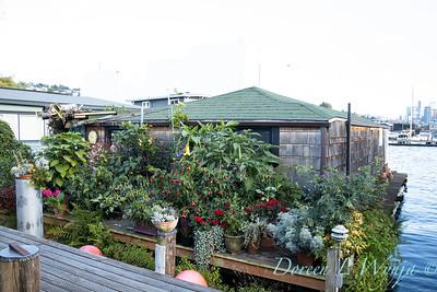 Bob Lily houseboat gardening_606