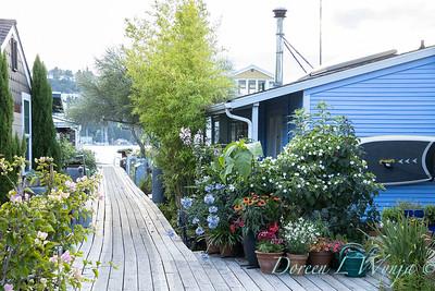 Houseboat garden_1133