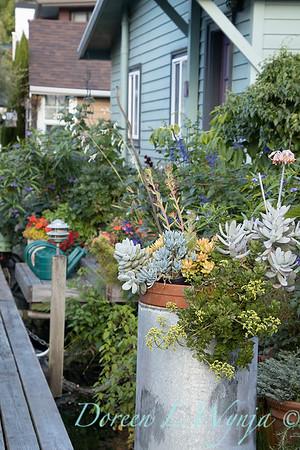 Bob Lily houseboat gardening_615