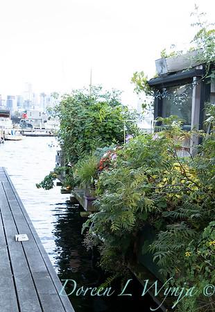 Bob Lily houseboat gardening_624