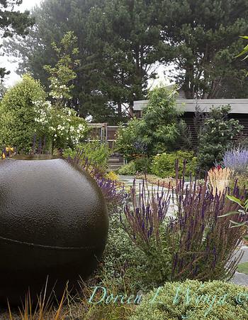 Janine & Terry's garden_1046
