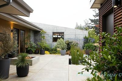Janine & Terry's garden_1002