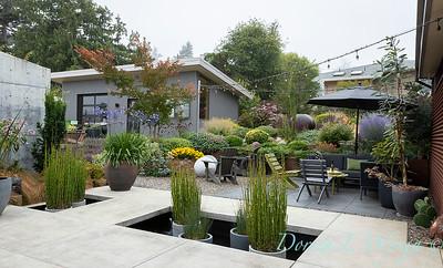Janine & Terry's garden_1016