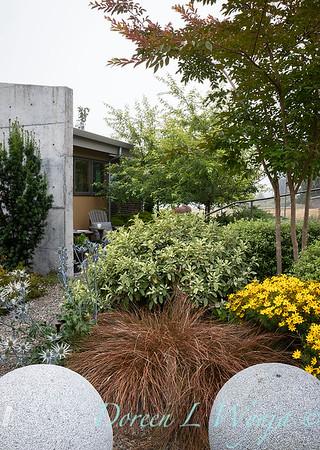 Janine & Terry's garden_1027