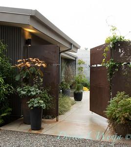 Janine & Terry's garden_1001