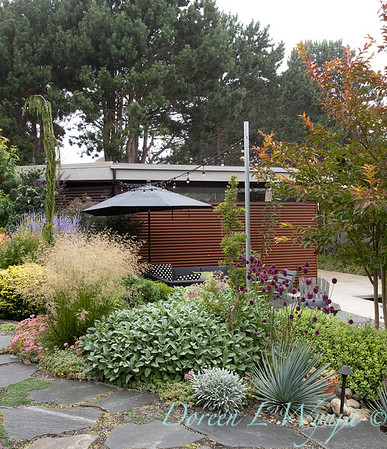 Janine & Terry's garden_1043