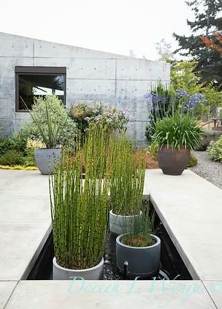 Janine & Terry's garden_1017