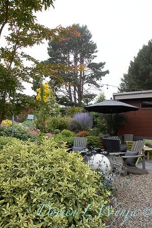 Janine & Terry's garden_1036