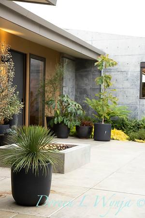 Janine & Terry's garden_1004