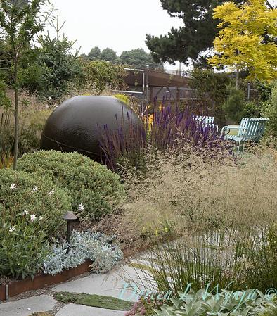 Janine & Terry's garden_1045