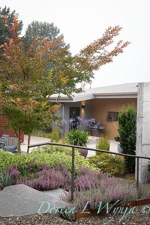 Janine & Terry's garden_1041