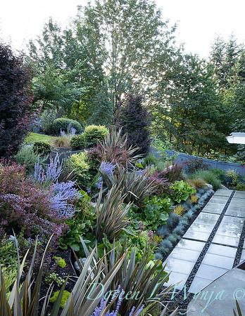 R & D garden_565