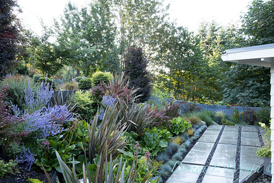 R & D garden_564