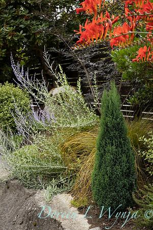 Medina project - Robin Parsons garden designer_2032