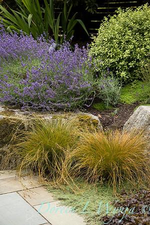 Medina project - Robin Parsons garden designer_2036
