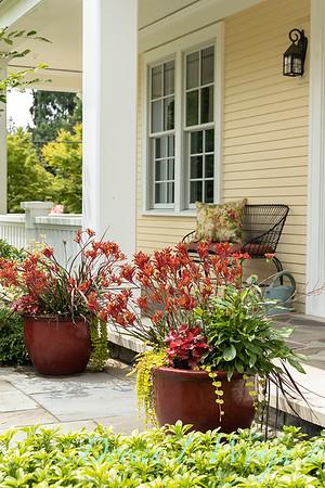 Medina project - Robin Parsons garden designer_2009