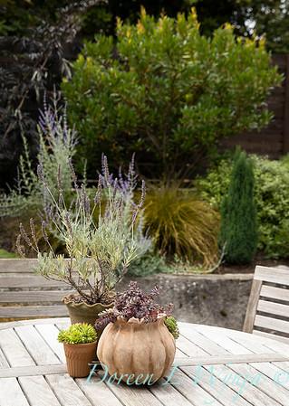 Medina project - Robin Parsons garden designer_2029