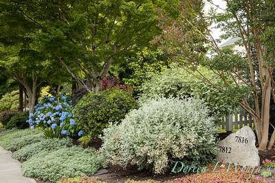 Medina project - Robin Parsons garden designer_2000