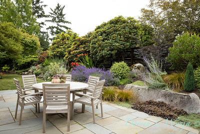 Medina project - Robin Parsons garden designer_2031