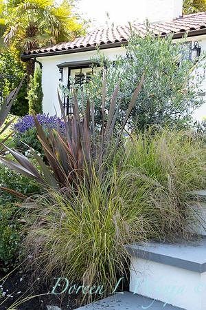 Robin Parsons garden designer - Broadmoor_1015