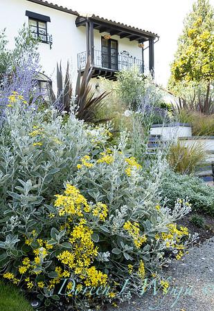Robin Parsons garden designer - Broadmoor_1018