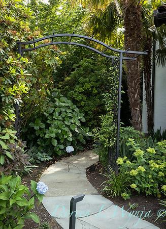Robin Parsons garden designer - Broadmoor_1038