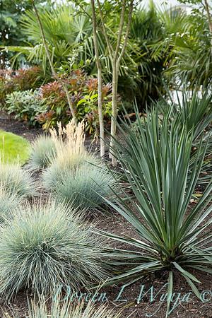 Robin Parsons garden designer - Broadmoor_1006