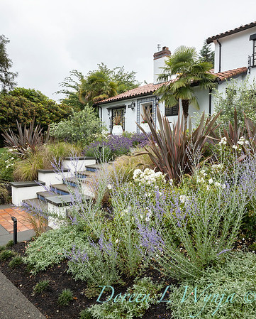 Robin Parsons garden designer - Broadmoor_1009