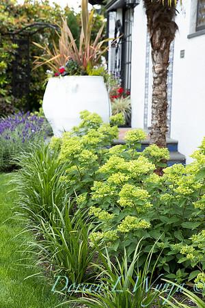 Robin Parsons garden designer - Broadmoor_1033
