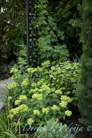 Robin Parsons garden designer - Broadmoor_1036