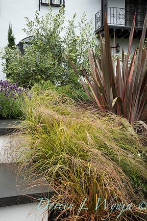 Robin Parsons garden designer - Broadmoor_1012