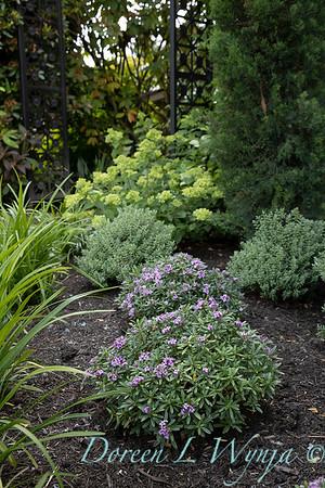 Robin Parsons garden designer - Broadmoor_1034