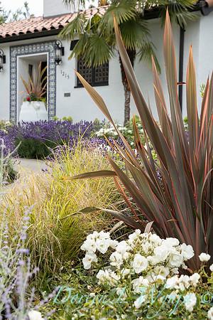Robin Parsons garden designer - Broadmoor_1013