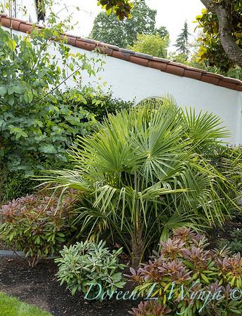 Robin Parsons garden designer - Broadmoor_1007