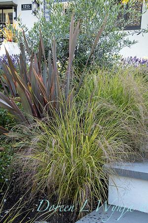 Robin Parsons garden designer - Broadmoor_1016