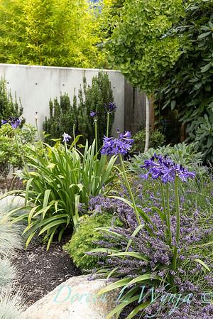 Robin Parsons garden designer - West Seattle project_2522