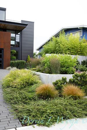Robin Parsons garden designer - West Seattle project_2502