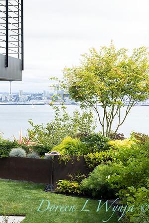 Robin Parsons garden designer - West Seattle project_2542
