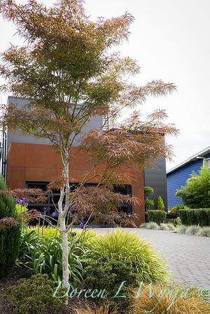 Robin Parsons garden designer - West Seattle project_2501