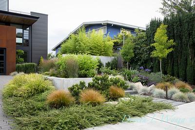 Robin Parsons garden designer - West Seattle project_2503