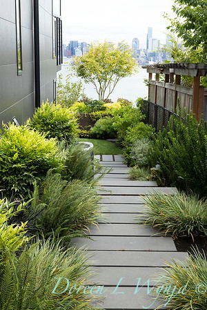 Robin Parsons garden designer - West Seattle project_2539