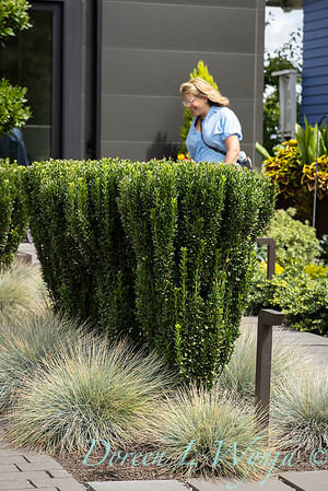 Robin Parsons garden designer - West Seattle project_2527