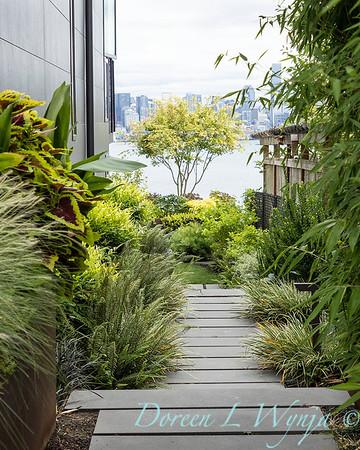 Robin Parsons garden designer - West Seattle project_2538